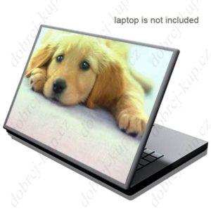 Dekorativní samolepící tapeta na notebook - Pes